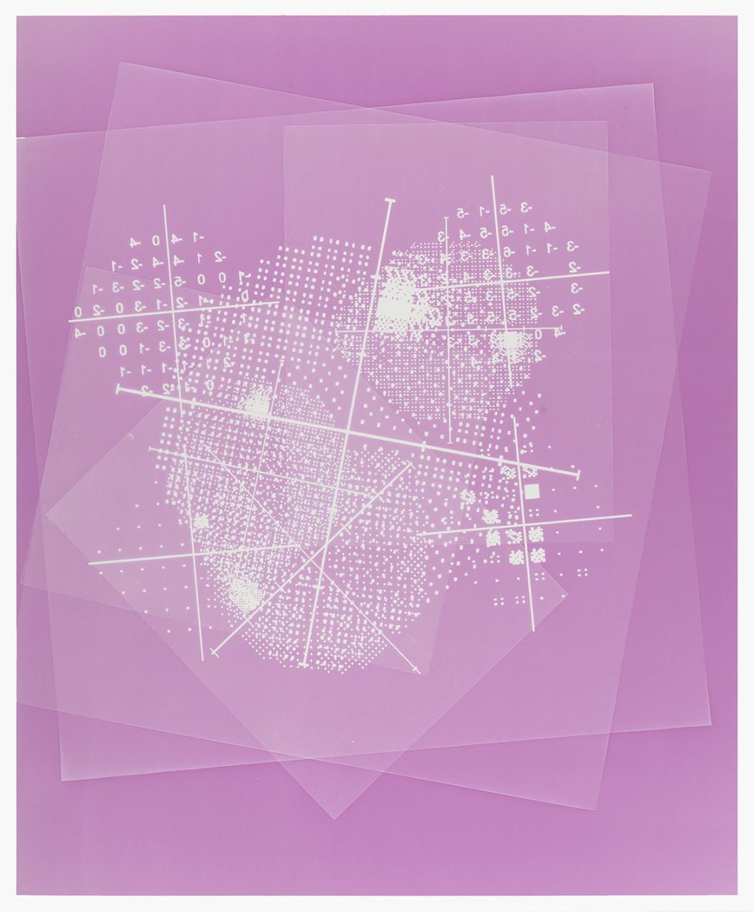 Visual field (Pink)